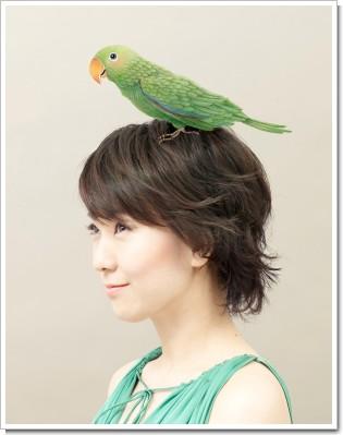 wakiyama+bird.jpg